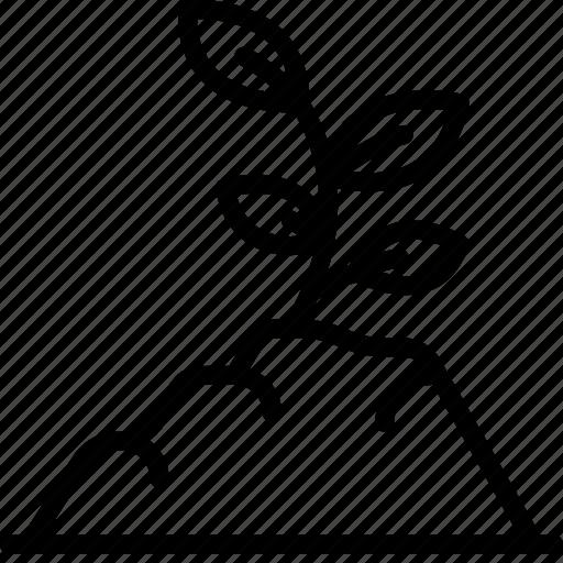 Грунт